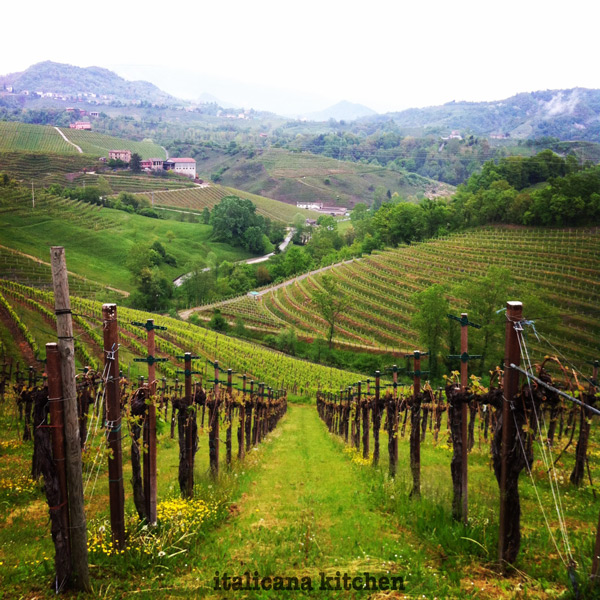 A-Weekend-Getaway-In-Prosecco-Wine-Country-Vineyards