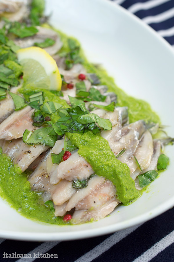 Marinated Anchiovies with Arugula Pesto