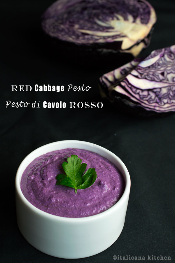 Red-Cabbage-Pesto