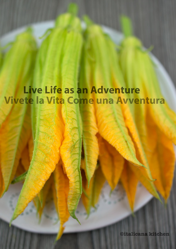Live Life as an Adventure